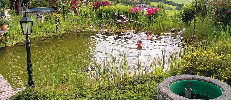 Very nice wimming pond